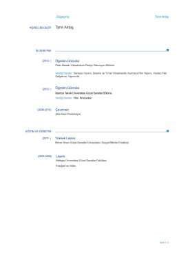 Europass CV - Plato Meslek Yüksekokulu
