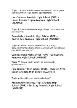 Fenerbahçe Anadolu High School