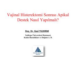 Vajinal Histerektomi