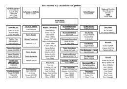 info yatırım a.ş. organizasyon şeması