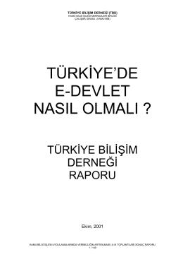 Rapor-123 - Türkiye Bilişim Derneği