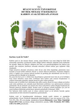 DMYO karbon Ayak izi hesabı - Bülent Ecevit Üniversitesi Fizik Bölümü