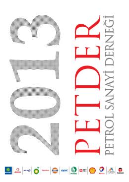 PETDER Sektör Raporu 2013
