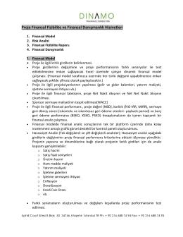 Proje Finansal Fizibilite ve Finansal Danışmanlık Hizmetleri