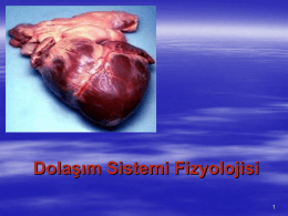 Dolaşım Sistemi Fizyolojisi
