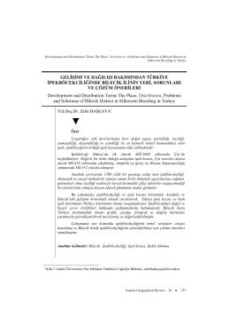 Makaleyi Yazdır - Sosyal Bilimler Enstitüsü Dergisi