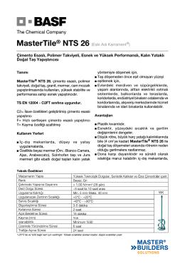 MasterTile® NTS 26 (Eski Adı Karrament®) Çimento Esaslı