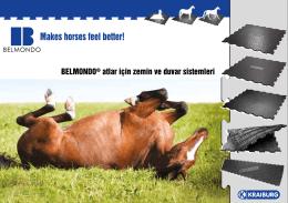 BELMONDO® atlar için zemin ve duvar sistemleri