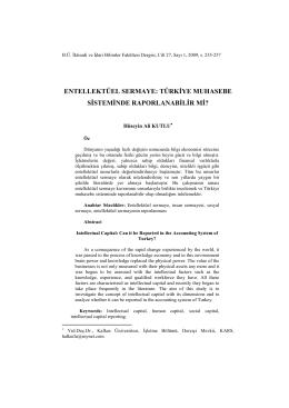 entellektüel sermaye - Entelektüel Sermaye Geliştirme Platformu