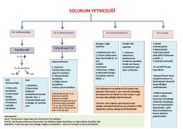 SOLUNUM YETMEZLİĞİ - Türk Toraks Derneği