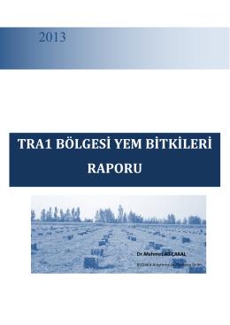 TRA1 Bölgesi Yem Bitkileri Sektörü Raporu