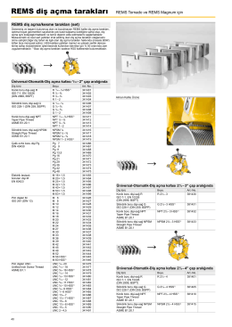 Katalog bölüm