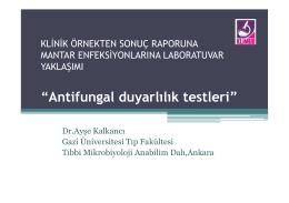 Antifungal duyarlılık testleri
