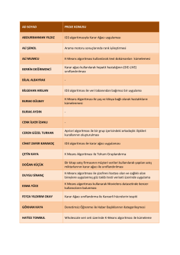 Web Madenciliği Dersi Final Proje Konuları
