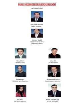 Yapılanma Şeması