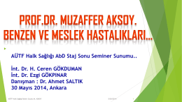 Muzaffer_Aksoy_Benzen_ve_Losemi_30.5.2014