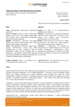 Mikroperkütan Nefrolitotomi Deneyimimiz
