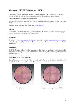 Chapman NKS - Sumikrobiyolojisi.org