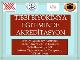 Prof.Dr. Aysun Bay Karabulut