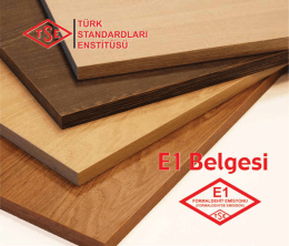 E1 Belgesi