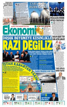 17 EKİM 2014 - Ekonomi Gazetesi