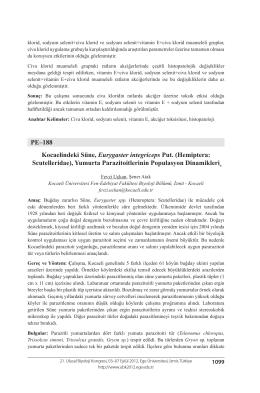 PE–188 Kocaelindeki Süne, Eurygaster integriceps Put. (Hemiptera