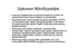 Uykunun Nörofizyolojisi