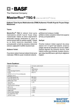 MasterRoc® TSG 6 (Eski Adı MEYCO® TSG 6) Kalkanlı
