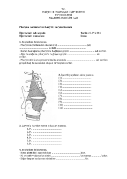 tc eskişehir osmangazi üniversitesi tıp fakültesi anatomi anabilim dalı