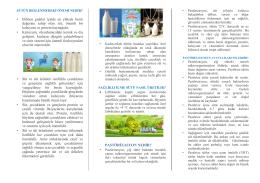 Süt Hakkında Bilinmesi Gereken Temel Bilgiler
