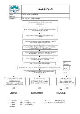 iş akış şeması