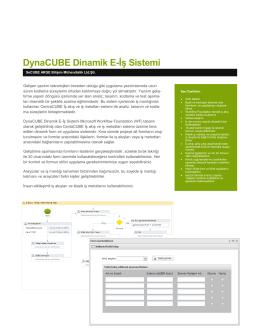 DynaCUBE Dinamik E-İş Sistemi