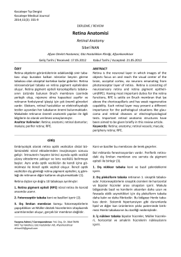 Retina Anatomisi - Kocatepe Tıp Dergisi