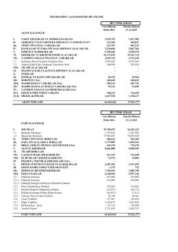 30 Haziran 2014 UFRS Mali Tabloları