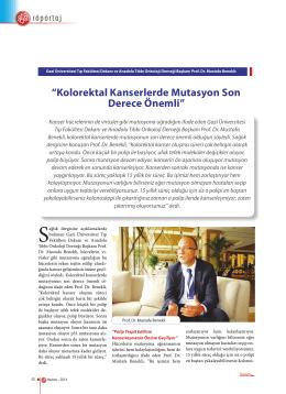 Prof. Dr. Mustafa Benekli