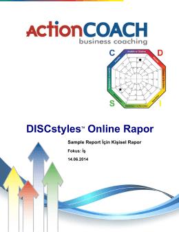 DISCstyles Online Rapor