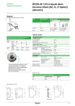 RCCB ID 125A Boyut - Schneider Electric