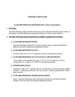 Ultra Mini Nefreskop Şartnamesi (PDF)