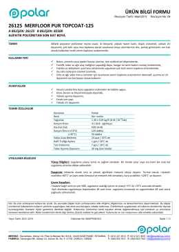 26125-MERFLOOR PUR TOPCOAT-125-TR