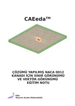 Naca0012 Viskozitesiz Çözümde Son İşlemci (Post Process)
