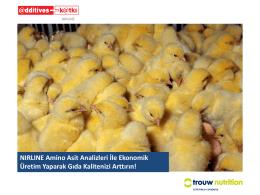 NIRLINE Amino Asit Analizleri İle Ekonomik Üretim