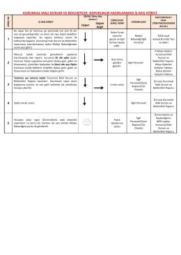 kurumsal mali durum ve beklentiler raporunun hazırlanması iş akış