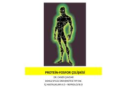 Diyaliz hastalarında protein – fosfor ilişkisi
