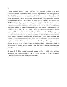 CEDAW 7. Ülke Raporu Ek2