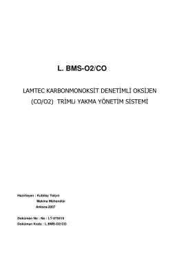 L. BMS-O2/CO - Yakma Teknolojisi için Sensör ve Sistemler