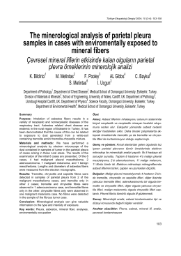 The minerological analysis of parietal pleura samples in cases with