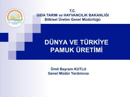 Dünya ve Türkiye Pamuk Üretimi