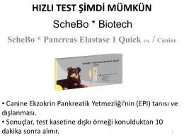 ScheBo R * Pancreas Elastase 1 Quick TM Canine