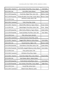 03.11.2014 Pazartesi Kuru Fasulye, Pirinç Pilavı, Turşu, Yogurt Yeşil