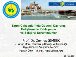 Prof. Dr. Zeynep ŞİMŞEK